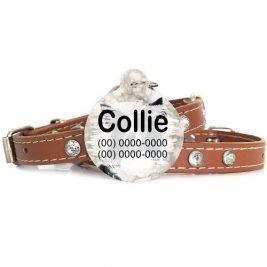 Plaquinha-Tag de identificacão de cães- Border Collie