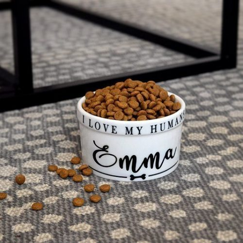 Pet Bowl- Personalizado