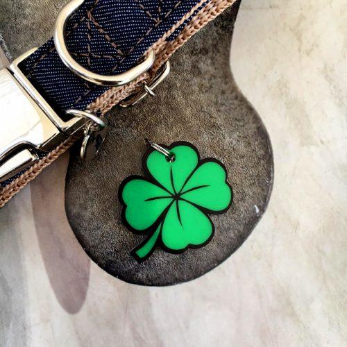 Plaquinha-Tag de identificação Luck