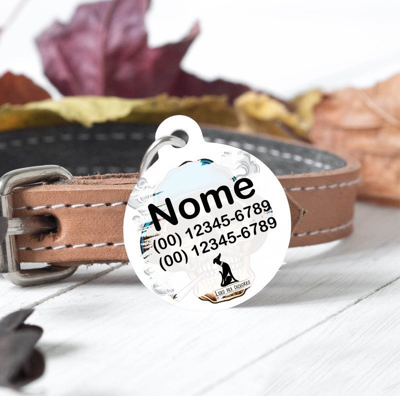 tag identificação cachorro